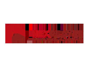 NexPlayer